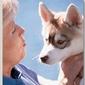 Feeding Your Canine Athlete