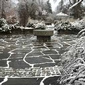 Winter Gardens at Cornell: Beauty in the Snow